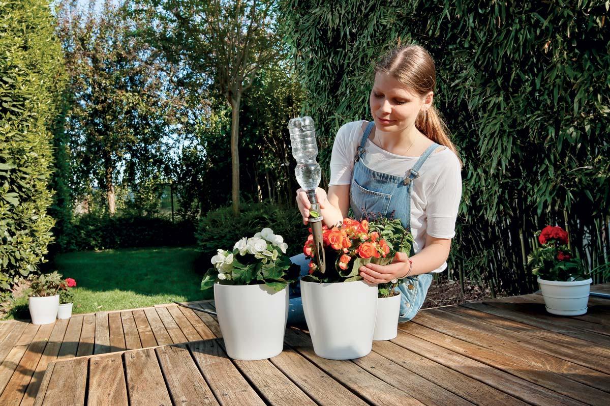 Bagnare Piante Con Bottiglie come innaffiare le piante in vacanza | il sistema aquaflora