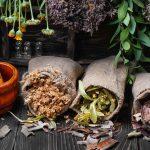 Erbe officinali | Coltivazione, essiccazione e conservazione