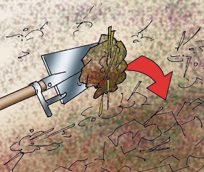 incorporare il letame nel terreno