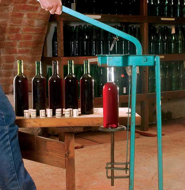 Imbottigliamento vino | Tecnica e trucchi - Giardinaggio, fiori, animali e  centinaia di articoli passo passo!