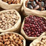 Coltivare fagioli | Semina e tipi