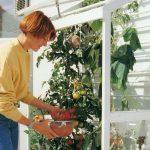 Serra da balcone | Come costruire una serra fai da te