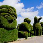 Arte topiaria | Tecniche e piante adatte