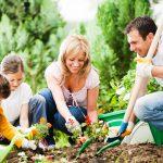 Progettare un giardino | A chi affidarsi?