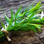 Dragoncello | Aromatica in cucina: coltivazione
