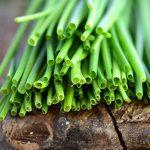 Erba cipollina | Aromatica in cucina: cura, coltivazione e proprietà