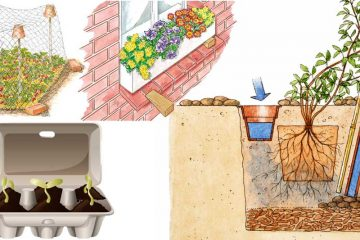 Come stabilizzare una scarpata fai da te in giardino for Idee x giardino