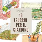 10 idee giardino fai da te | Trucchi per il giardinaggio