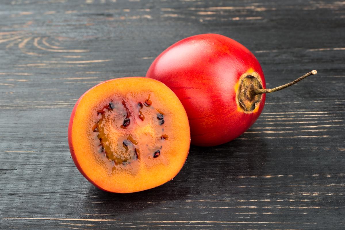 ricco raccolto ricco di vitamina C super delizioso dolce-Saur Albero Pomodoro tamarillo