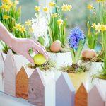 Davanzale... di primavera! Trasformiamolo in un piccolo giardino