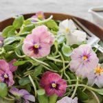 Floreka 2018 | La Kermesse dove si assaggiano... i fiori!