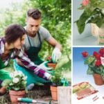 Giardinaggio | Ecco i lavori di Aprile