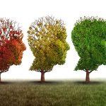 5 piante che fanno bene alla mente