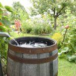 Acqua piovana | Come recuperarla: le soluzioni
