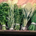 Erbe aromatiche | Quali scegliere e come procedere