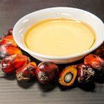 Olio di palma | Le proprietà e gli utilizzi: cosa dobbiamo sapere?