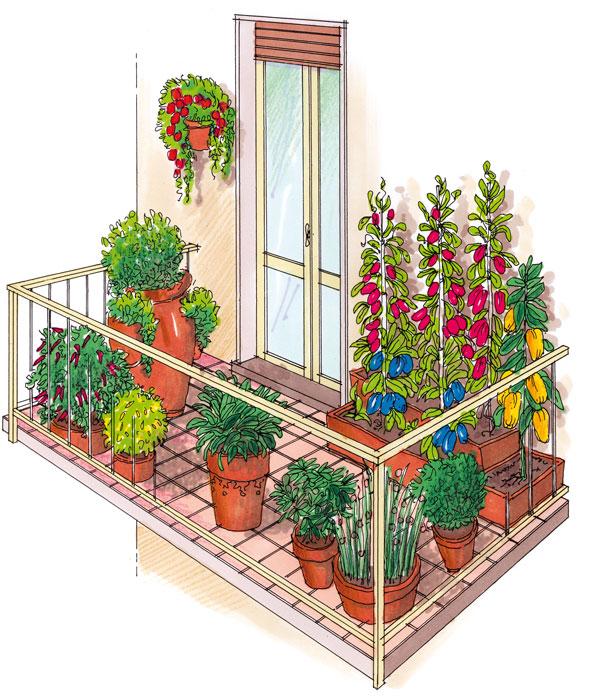 Orto sul balcone | Ecco come realizzarlo fai da te ...