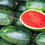 Coltivare angurie | Un breve approfondimento