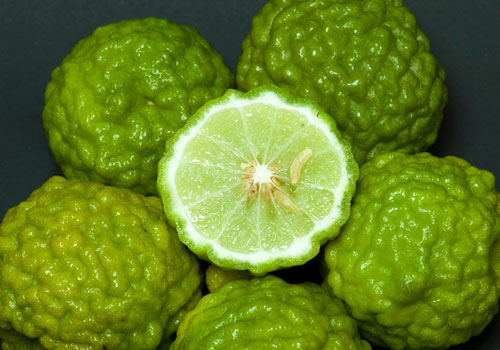 Limone Kaffir