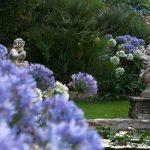 Giardini di Villa della Pergola in agosto | Tanti fiori nel verde della macchia mediterranea