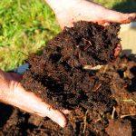 Compost fai da te per l'orto biodinamico | Come realizzarlo