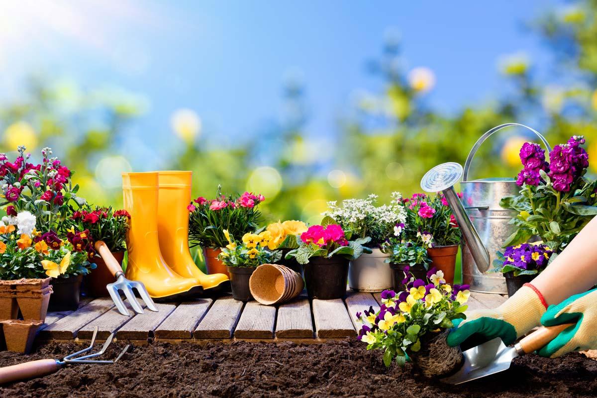 lavori giardino agosto