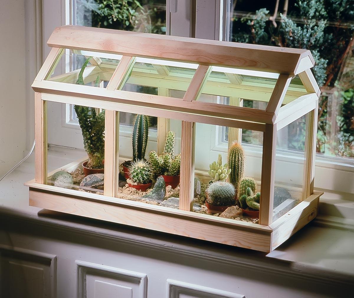 Piccole Serre Da Casa serra per piante grasse | cactacee sotto vetro