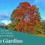 I lavori di ottobre e novembre in giardino