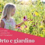 Agosto e settembre | Lavori in giardino e nell'orto