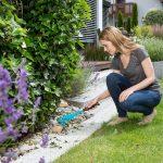 Potare e pulire | I lavori di fine estate