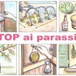 Stop ai parassiti | Difendersi dagli insetti