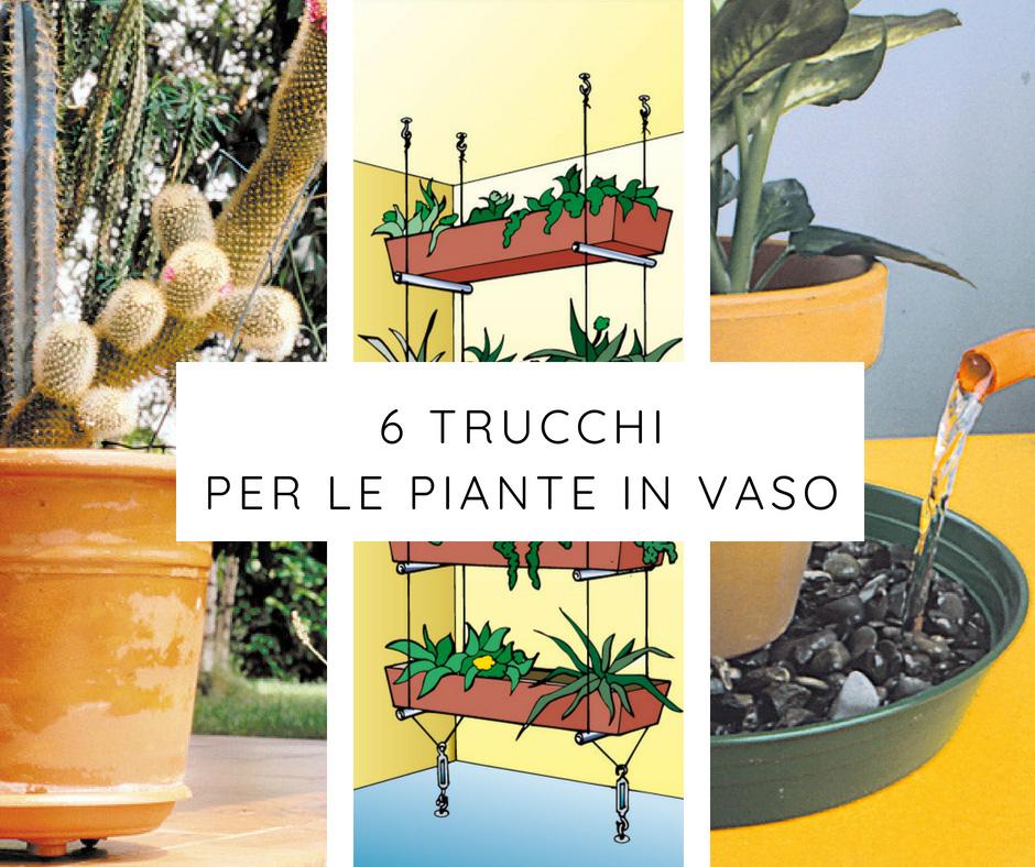 6 Trucchi Per Le Piante In Vaso Fai Da Te In Giardino