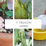 7 trucchi per il verde in casa e in giardino
