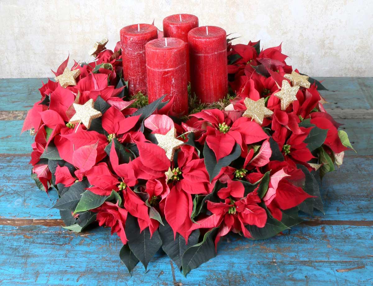 Stelle Di Natale Da Costruire ghirlanda fai da te con la stella di natale - fai da te in