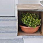 Vasi in scatola | Proteggiamo le piante dal freddo