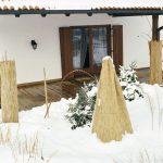 Come proteggere le piante dal freddo | I diversi metodi