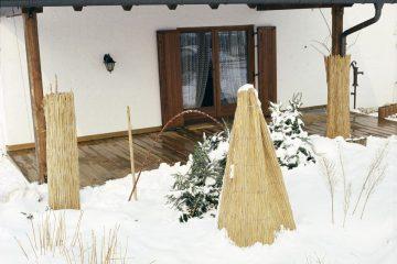 proteggere le piante in inverno