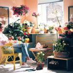 Come illuminare le piante in casa | Soluzione fai da te