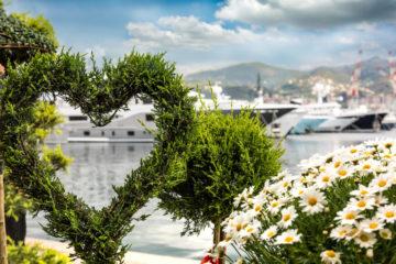 Yacht&Garden