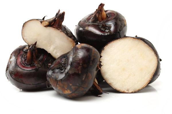 Trapa natans castagna frutto