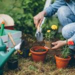 Lavori in giardino | Consigli utiliper il mese dimarzo