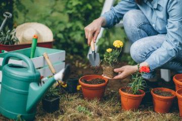 lavori in giardino