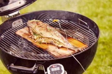 barbecue per cottura indiretta
