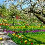 Scale da giardino fai da te | Realizzazioni in mattoni e in legno