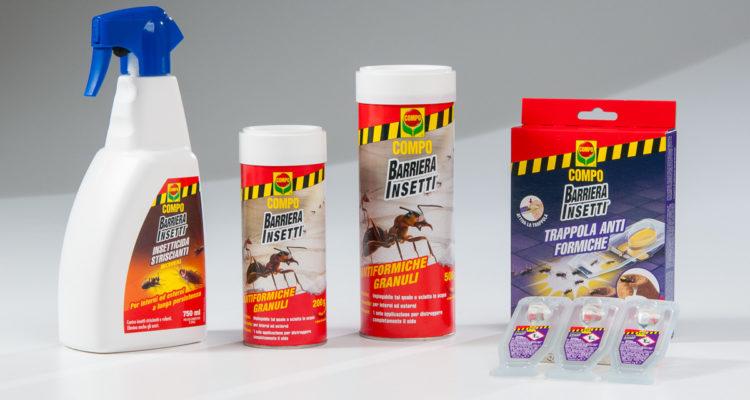 eliminare formiche