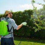 Nuova pompa a zaino Futura di Verdemax | Robusta e affidabile