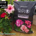 Terriccio TRIPLO ® ... quello con le proteine!