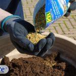 Qualità Osmocote ® per fertilizzare fino a 6 mesi